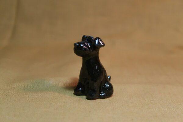豆犬 黒シュナ