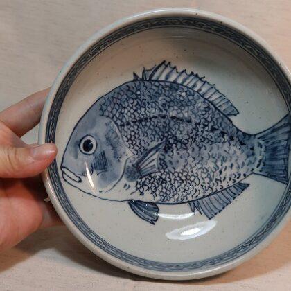 18cm鉢 鯛